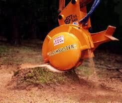 stump grinding basin pocket